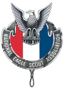NESA-Emblem1